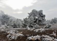 La Città Possibile – Inverno 2016