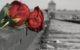 25 gennaio : SHOAH canti e riflessioni per il giorno della memoria