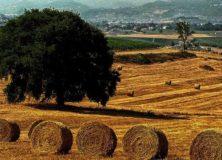 Una proposta di legge dal basso per fermare il consumo di suolo