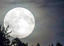 L & L … o della Luna